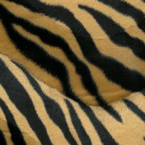Samples Of Fleece